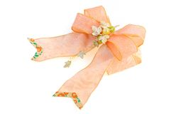 Honeysuckle (color) satin bow Stock Images