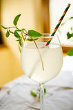 Honeysuckle lemonade Royalty Free Stock Photo