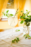 Honeysuckle lemonade in glass Royalty Free Stock Images