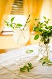 Honeysuckle lemonade in glass Royalty Free Stock Images