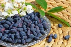 Honeysuckle on a plate. Lonicera caerulea, the honeyberry, blue-berried honeysuckle, or sweetberry honeysuckle, is a honeysuckle native throughout the cool stock photo