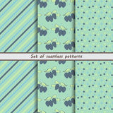 Honeysuckle, a set of seamless patterns, Royalty Free Stock Image