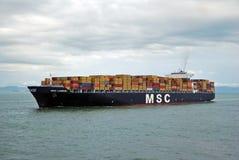 Hong Kong, 20 maggio 2010 - imbarcazione di contenitore Immagine Stock