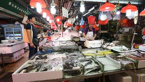 HONG KONG, HONG KONG - APRIL 10,2017 : Authentic fish market in Kowloon, Hong Kong . In the seafood market fresh raw stock video footage