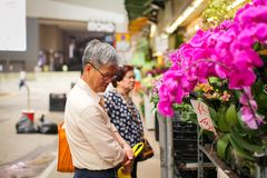 HONG KONG - APRIL 2018: elderly asian man choose various beautyful pink orchid in pots in street flower market royalty free stock photography