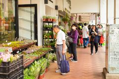 HONG KONG - APRIL 2018: elderly asian man choose various cactuses in pots and succulents in street flower shop.  royalty free stock photo