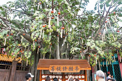 The Wishing tree, Ngong Ping Village, Lantau Stock Image