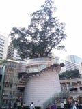 Hong Kong arvgamla 1881 Marine Police Headquarters Arkivbild