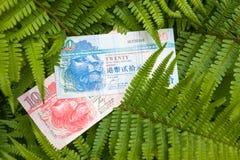 Hong Kong-Banknote auf den Blättern Stockfotos