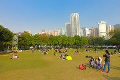 HONG KONG, CHINA - 26 DE ENERO DE 2017: Muchedumbre de gente, descansando sobre la hierba, en el parque de Victoria en Hong-Kong  Imágenes de archivo libres de regalías