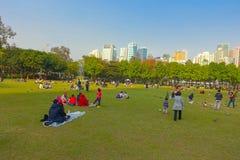 HONG KONG, CHINA - 26 DE ENERO DE 2017: Muchedumbre de gente, descansando sobre la hierba, en el parque de Victoria en Hong-Kong  Imagen de archivo