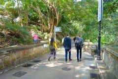 HONG KONG, CHINA - 26 DE JANEIRO DE 2017: Povos não identificados que andam dentro de um parque na floresta de Hong Kong, China imagens de stock