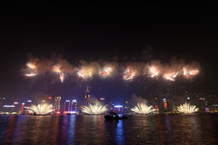 Hong Kong Chinese New Year fireworks 2011 Royalty Free Stock Photos