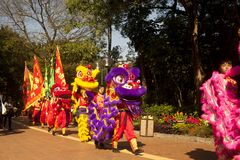 Hong Kong Chinese New Year royaltyfri fotografi