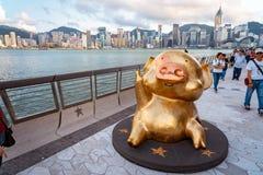 Hong Kong, Cina - statua dorata del maiale sul viale delle stelle fotografie stock