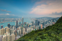 Hong Kong city downtown with mountain front view Stock Photos