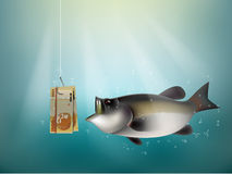Hong kong dollars money paper on fish hook. Fishing using hong kong dollars money cash as bait, hong kong investment risk concept idea Royalty Free Stock Images