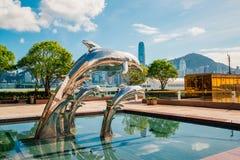 Hong Kong Dolphin door de Overzeese Kust Stock Afbeeldingen