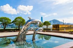 Hong Kong Dolphin door de Overzeese Kust Royalty-vrije Stock Foto