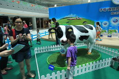 2015 Hong Kong Dutch Lady Pure Animal Husbandry Farm event. Dutch Lady Pure Animal Husbandry Farm event, located in Metro City Plaza, Hong Kong. The event aims Stock Images