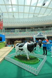 2015 Hong Kong Dutch Lady Pure Animal Husbandry Farm event. Dutch Lady Pure Animal Husbandry Farm event, located in Metro City Plaza, Hong Kong. The event aims Stock Photo
