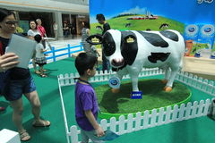 2015 Hong Kong Dutch Lady Pure Animal Husbandry Farm event. Dutch Lady Pure Animal Husbandry Farm event, located in Metro City Plaza, Hong Kong. The event aims Royalty Free Stock Images
