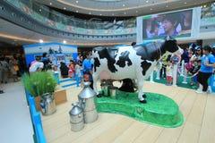 Hong Kong Dutch Lady Pure-Tierzucht-Bauernhofereignis 2015 Stockbilder