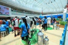 Hong Kong Dutch Lady Pure-Tierzucht-Bauernhofereignis 2015 Lizenzfreies Stockfoto