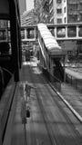 Hong Kong en blanco y negro foto de archivo libre de regalías