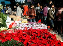 Hong Kong: Flower Market Road Royalty Free Stock Photography