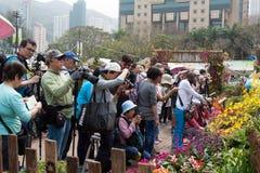 Hong Kong Flower Show Lizenzfreie Stockfotografie