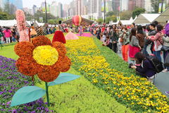 Hong Kong Flower Show 2015 Fotos de archivo libres de regalías
