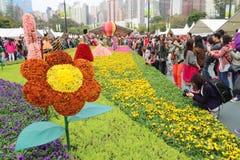 Hong Kong Flower Show 2015 Royalty Free Stock Photos