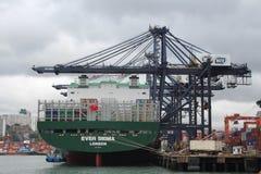 Hong Kong Freight Harbor Stock Image