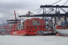 Hong Kong Freight Harbor Royalty Free Stock Photo
