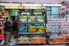 Hong Kong Gold fish market Stock Photos