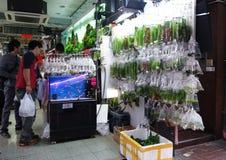 Hong Kong Gold fish market in Tung Choi street Royalty Free Stock Photo