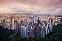 HONG KONG - JUNE 08, 2015: skyline of Hong Kong from Victoria Pe Royalty Free Stock Photos