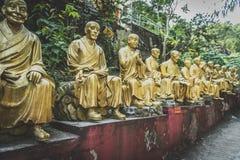 Hong Kong, Listopad 2018 - dziesięcia tysięcego Buddhas monasteru mężczyzny sadło Sze zdjęcie stock