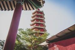 Hong Kong man feta Sze för November 2018 - tio tusen Buddhakloster fotografering för bildbyråer