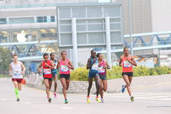 Hong Kong Marathon 2015 Royalty Free Stock Photography