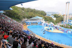 Hong Kong : Ocean Park. Ocean Park Hong Kong is a world class marine life theme park featuring animal exhibits, thrill rides and shows that offer guests an Stock Images