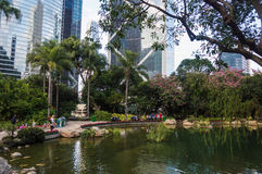Hong Kong Park Pond stock photo