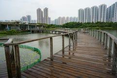 Hong Kong parkvåtmark Arkivfoto