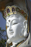 hong kong posąg Zdjęcie Stock