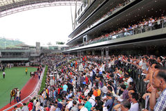 Hong Kong : Sha Tin Racecourse Royalty Free Stock Images