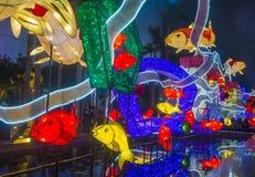 Hong Kong 2018 Spring Lantern exhibition. HONG KONG , MARCH 05 : The Spring Lantern exhibition in Hong kong on March 05 2018. The annual Lantern exhibition is Stock Photography