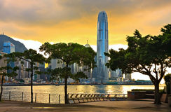 Hong Kong sunset. Skyline with tree silhouette in the front stock photo