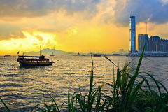 Hong Kong sunset. Skyline with grass silhouette in the front Stock Photography