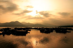 Hong Kong sunset. Take a photo at hong kong fish villiage Royalty Free Stock Photo